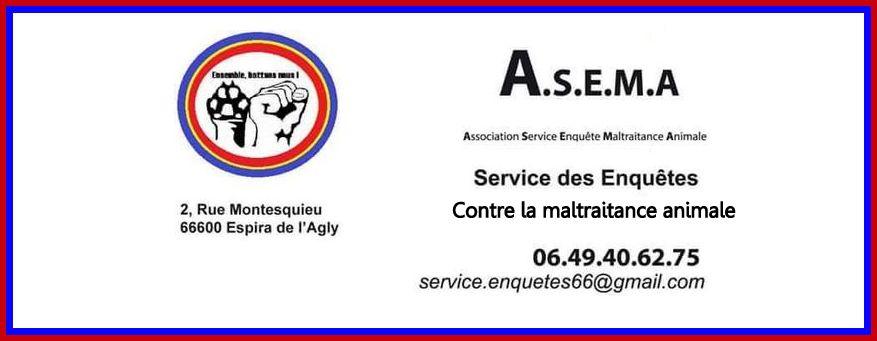 22-03-18 La présidente de l'Association ASEMA, Dany GOIZE