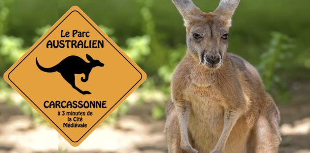 05-07-18 : Carole MASSON, propriétaire du Parc Australien de Carcassonne