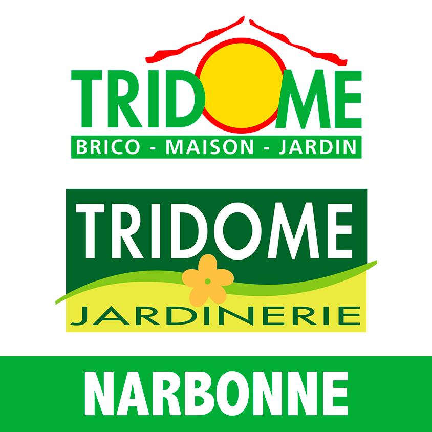06-05-20 : Jean-Michel TOURNU, directeur de Tridôme bricolage à Narbonne.