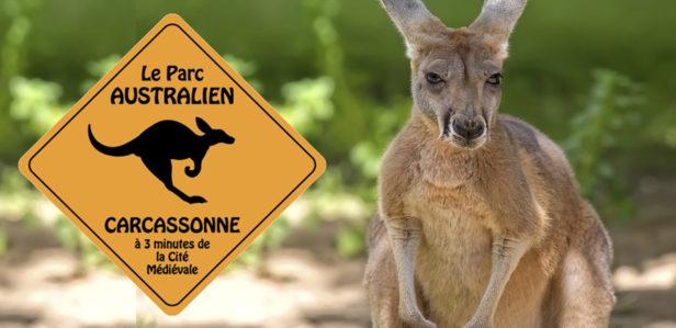 31-07-20 : Carole MASSON, responsable du Parc Australien à Carcassonne
