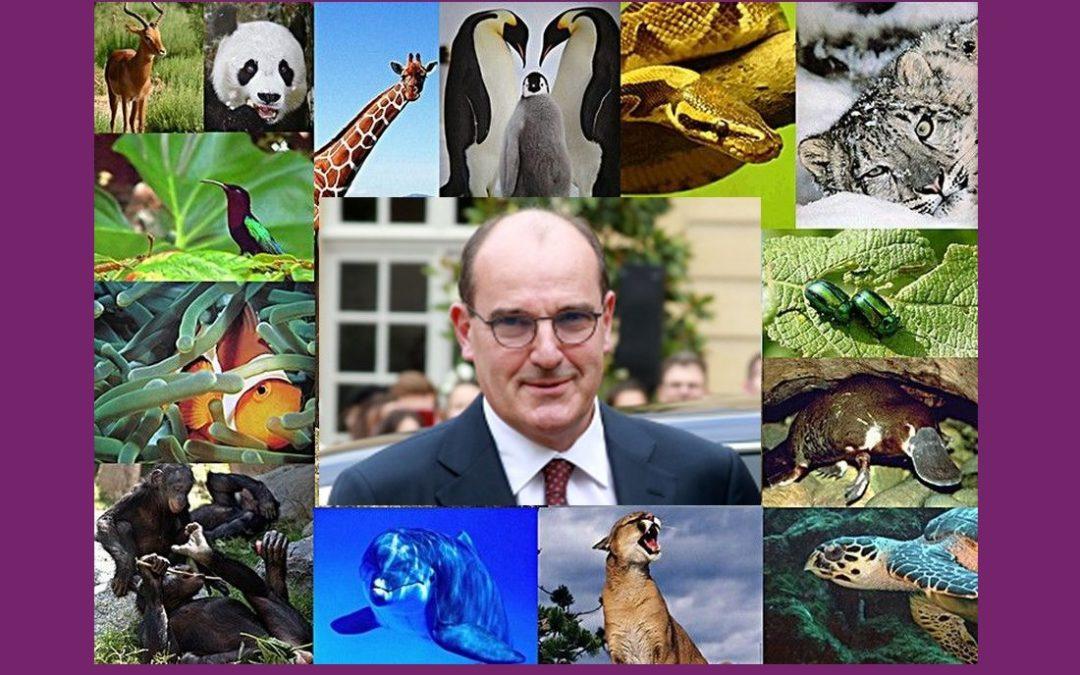 LA CHRONIQUE DE JEAN-CLAUDE JULÈS, 05 OCT 2020. Biodiversité ? LE TEXTE.