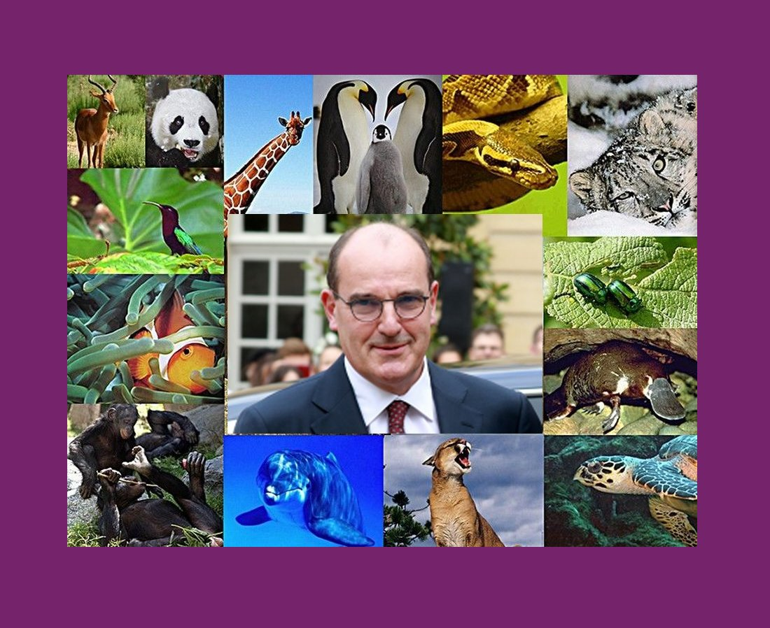 slider biodiversité